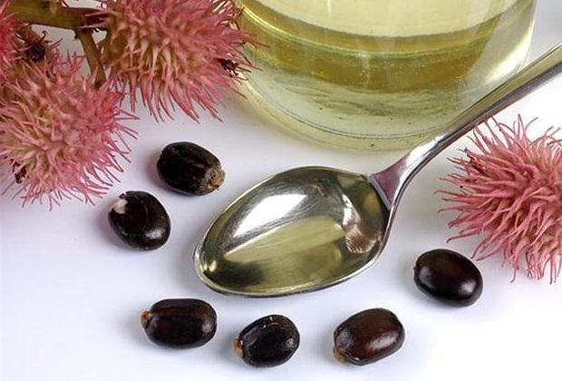 აბუსალათინის ზეთი მცენარეებისთვის