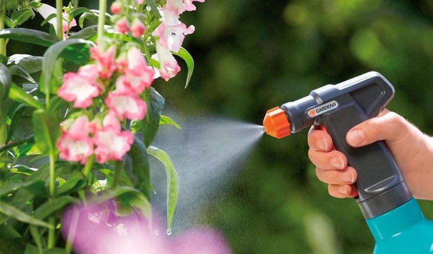 ქიმიური პრეპარატები ოთახის მცენარეების მავნებლებისგან დასაცავად