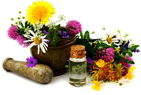 აფთიაქი მცენარეებისთვის: