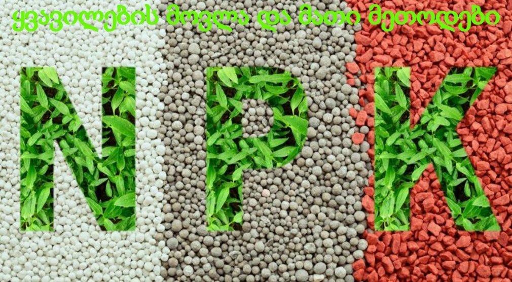 ფოსფორიანი სასუქი მცენარეებისთვის