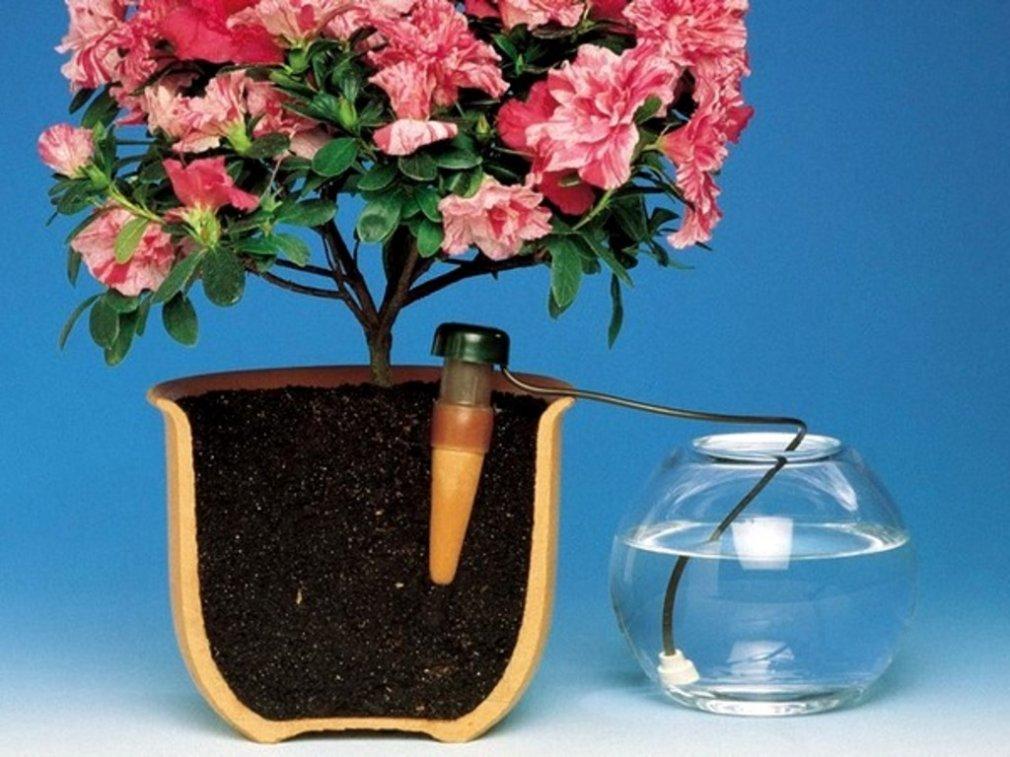 ყვავილების ავტომატური მორწყვა შვებულების დროს