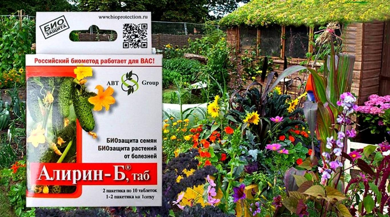 ალირინი ბ - ფუნგიციდი და ანტისტრესული საშუალება მცენარეებისათვის